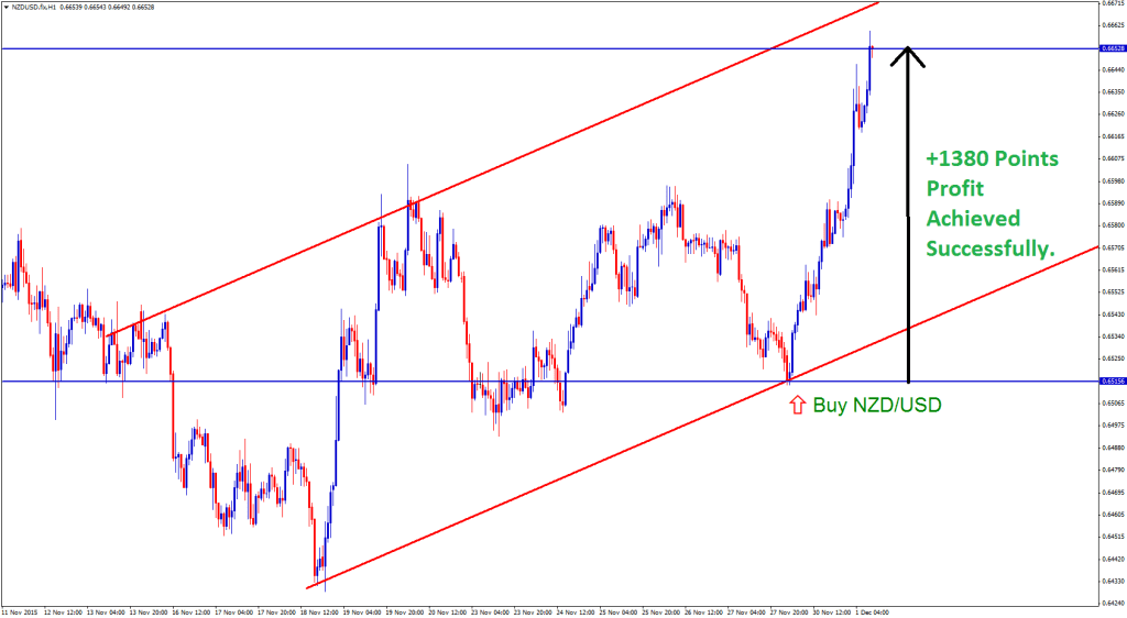 NZDUSD buy forex signal went up from support level of up trend line