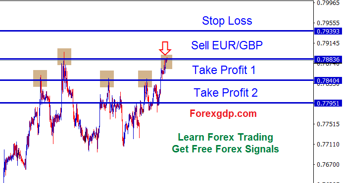 Double Top pattern in forex eurgbp sell trade signal