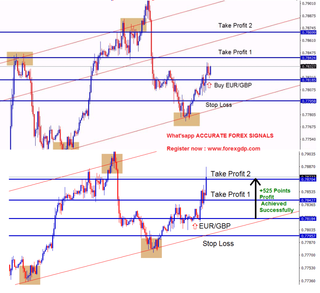 Reversal forex signals in EURGBP during higher lows touch