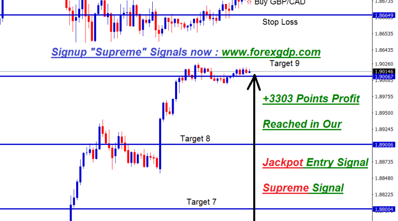 Jackpot forex signal in forexgdp gbpcad
