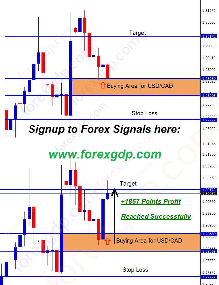 usd cad trading strategy for buying at pull back and rebound