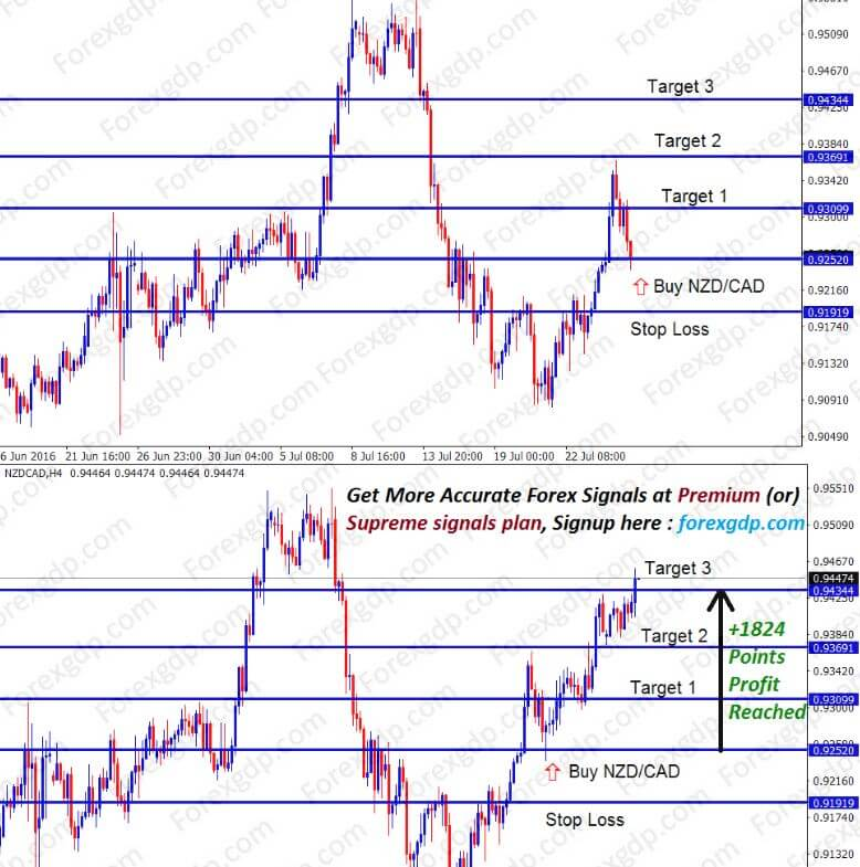 nzdcad went up from the support level to resistance
