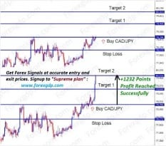 cadjpy 1232 points profit in forecast signal