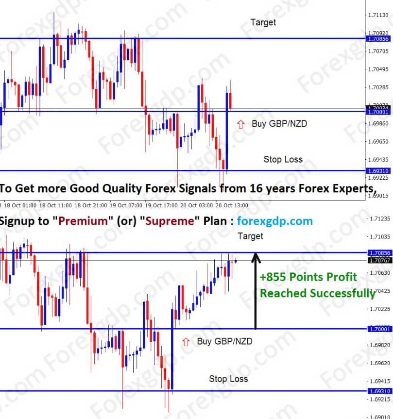 gbp nzd trading strategy for buying at the support