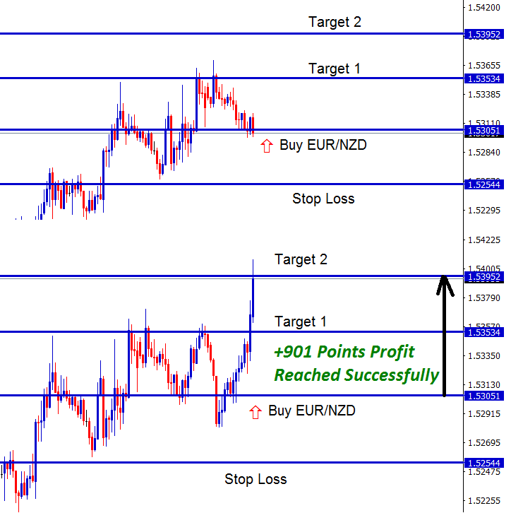 901 points in eurnzd buy trade signal