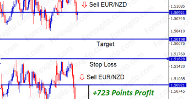 eur nzd forex trading sell signal made 72 pips profit