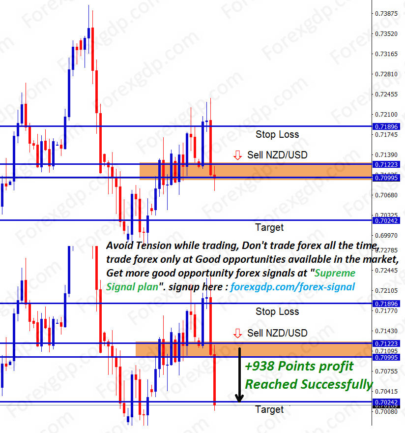 forex signals in newzealand dollar made 938 points profit