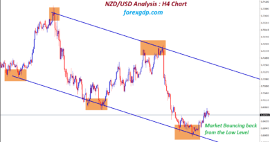 nzdusd market bouncing back from the low level at trend support