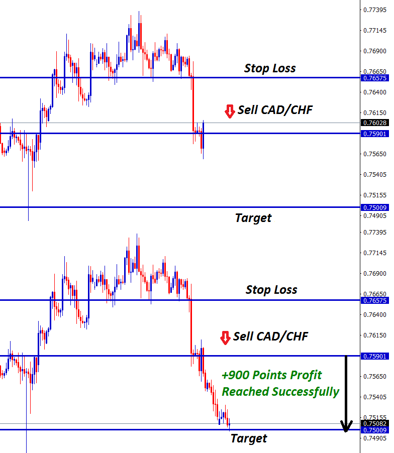 cad chf sell at 900 points profit trade