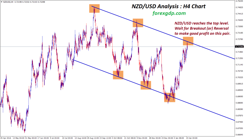 nzd usd forex chart showing a clear down trend