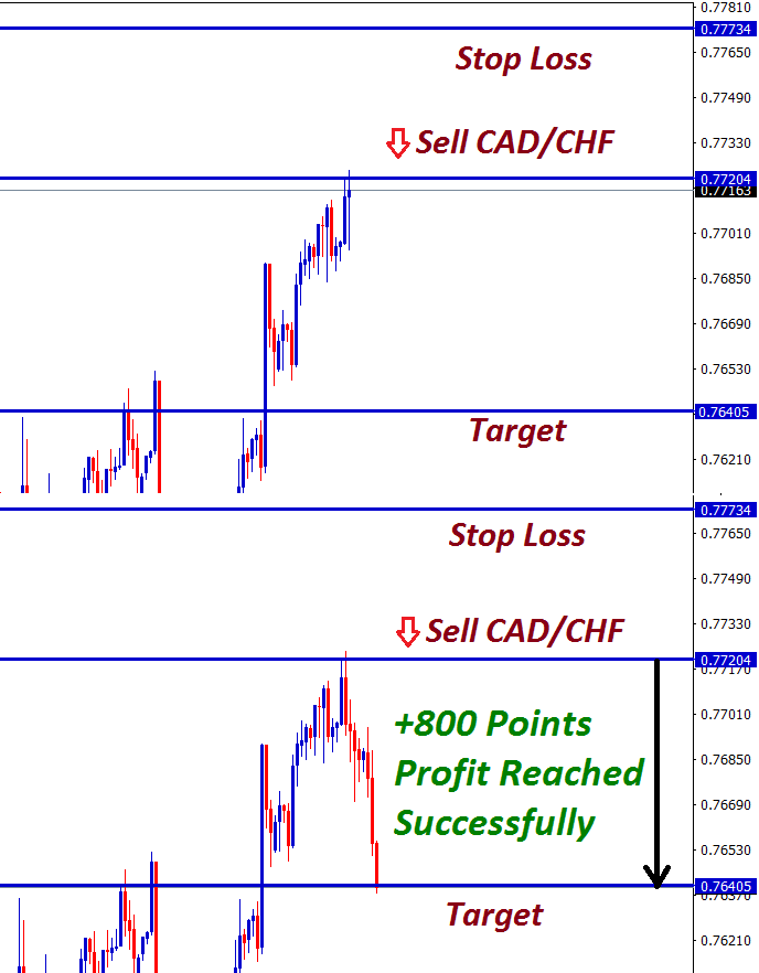 cadchf fx signal made 800 points profit