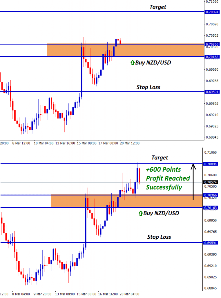nzd usd forex signal with retracement candlesticks reached 600 points profit