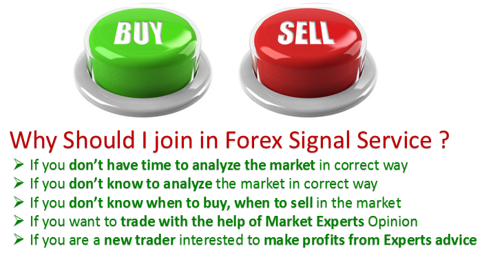 Forex signals south africa