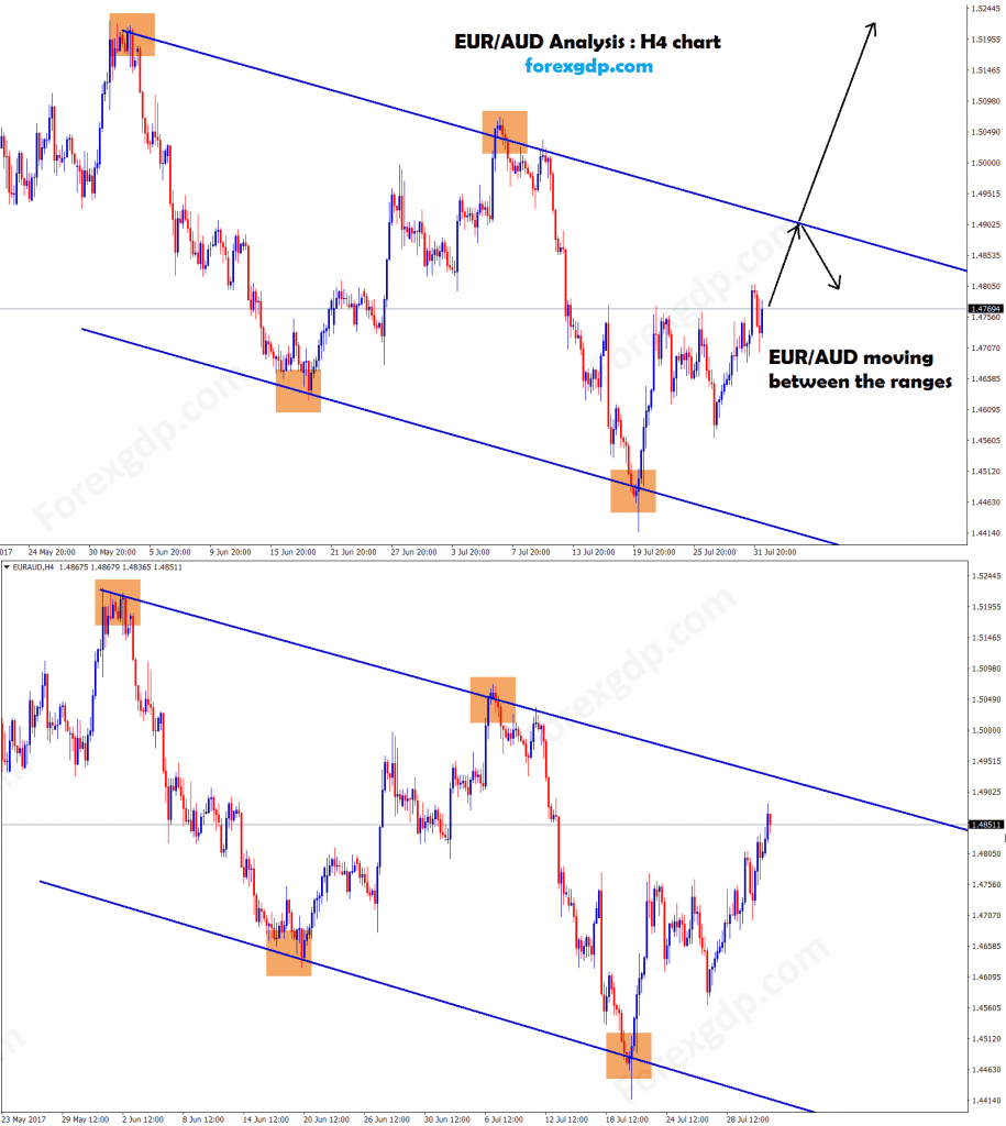 Up or down in forex market is easy with trend lines