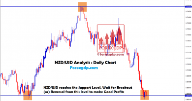 nzdusd forex signals at the support level