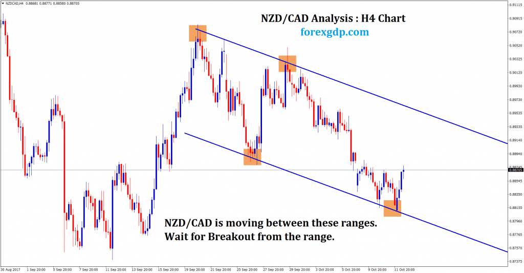 Support level reversal strategy on NZDCAD