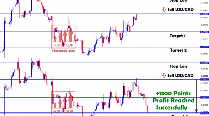 1300 points reached in USDCAD sell trading signal