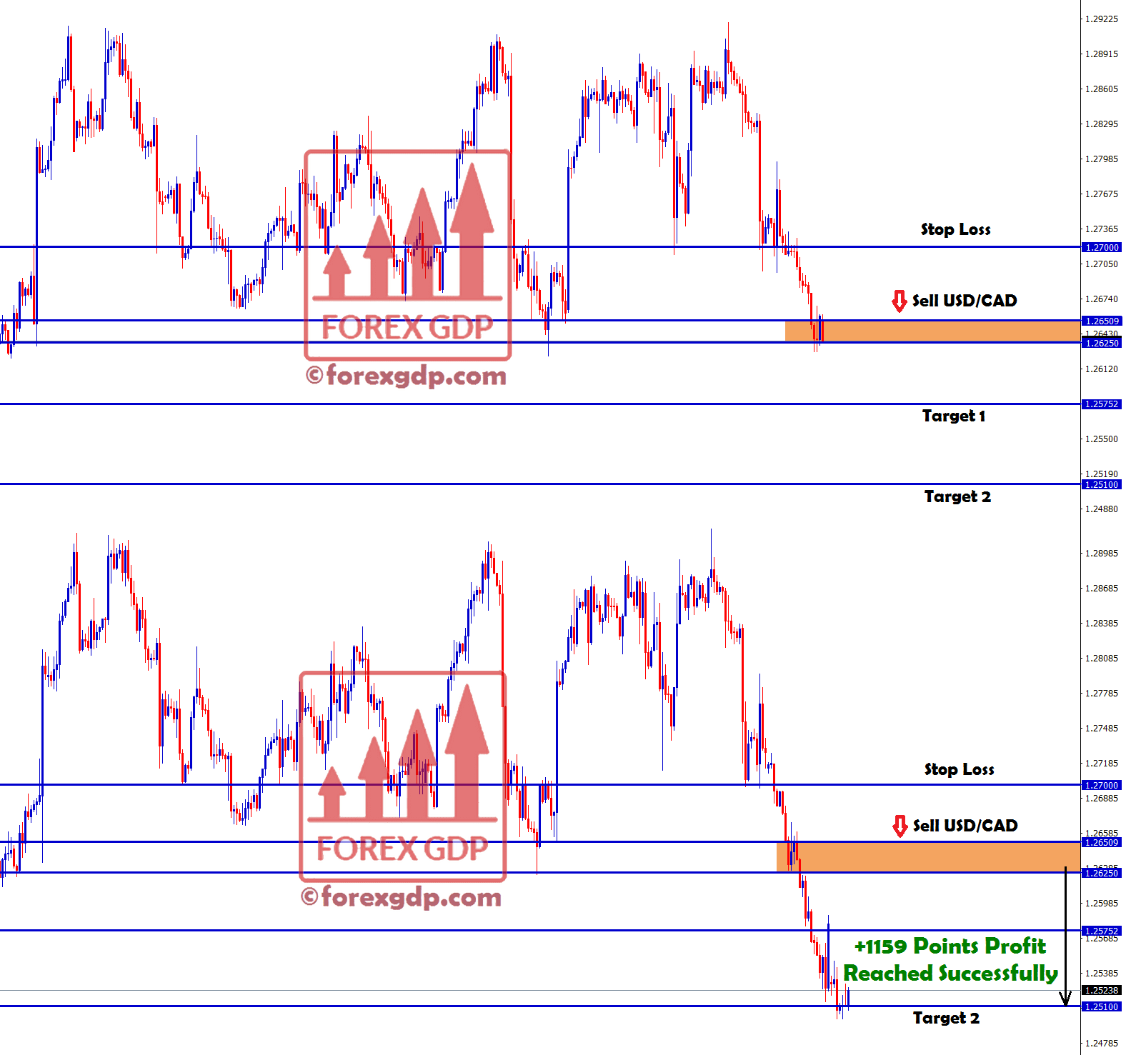 +1159 points profit made in usd cad sell signal