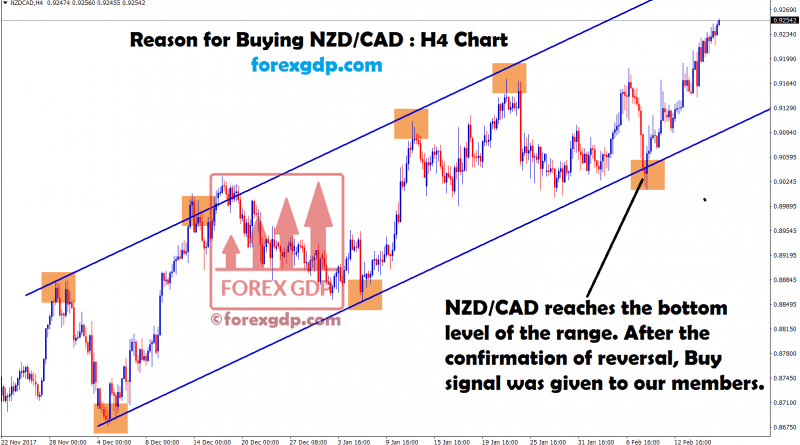 nzdcad forex factory