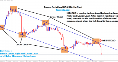 usd cad sell signal given after reached the top