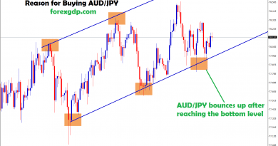 aud/jpy bounce up after hits the bottom level