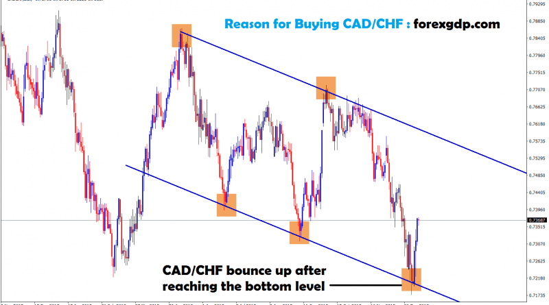 cad chf bounce after reached the bottom