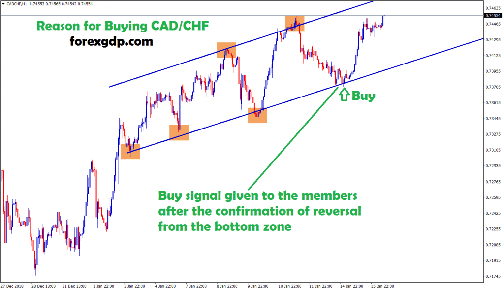 buy signal given after confirmation of reversal from bottom in cad/chf