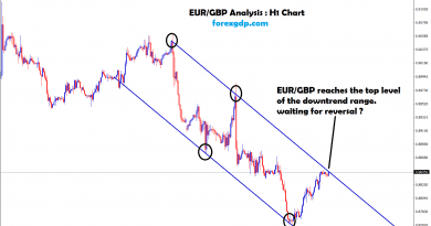 eur gbp reaches the top zone of the downtrend