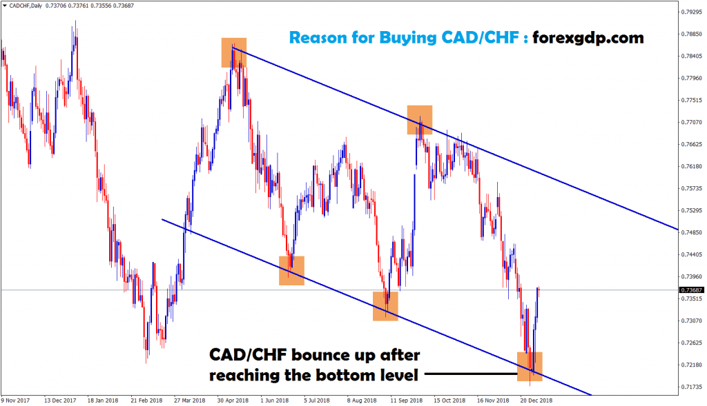 cad chf bounce up after hits the bottom level