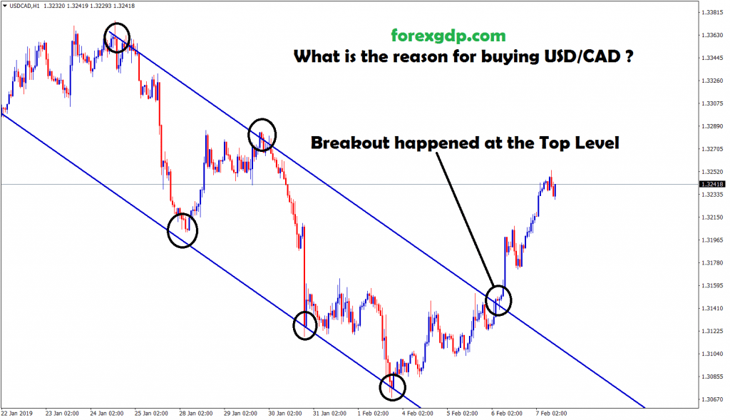 breakout happened at the top level in usd cad