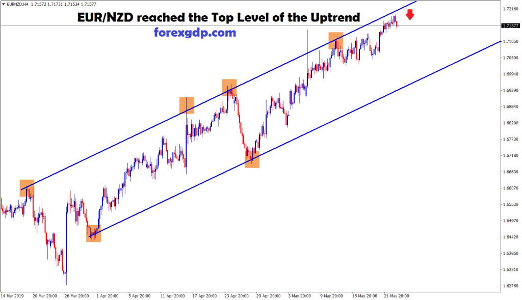 eur/nzd reached the top level of the uptrend