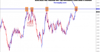 after 6 months eur/aud again reached the resistance zone