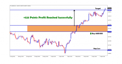 +525 points profit reached successfully in aud usd buy signal