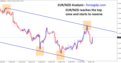 eur nzd reaches the top level and start to reverse in H1 chart