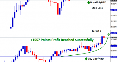 GBP/NZD touched target 2 level 1.96907 with 1557 points profit in buy signal