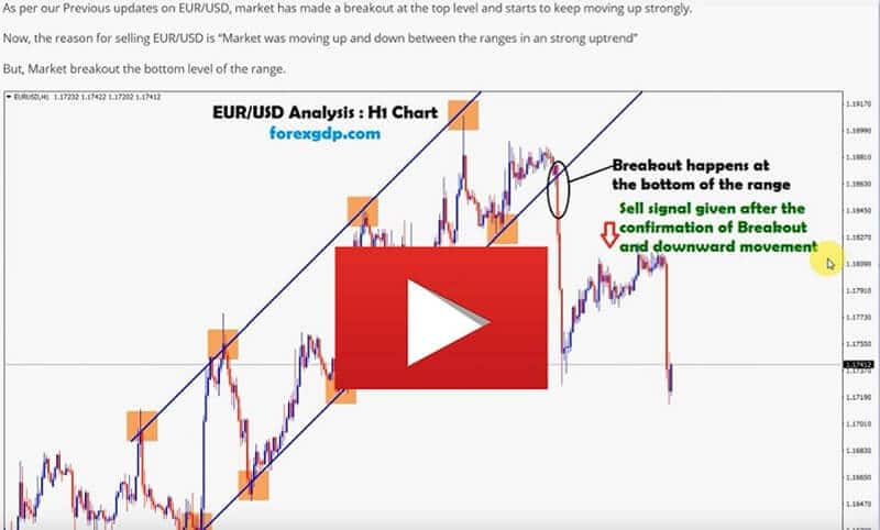 EUR USD Forex Signals