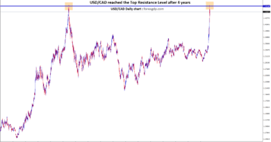 Double top created in USD/CAD daily chart