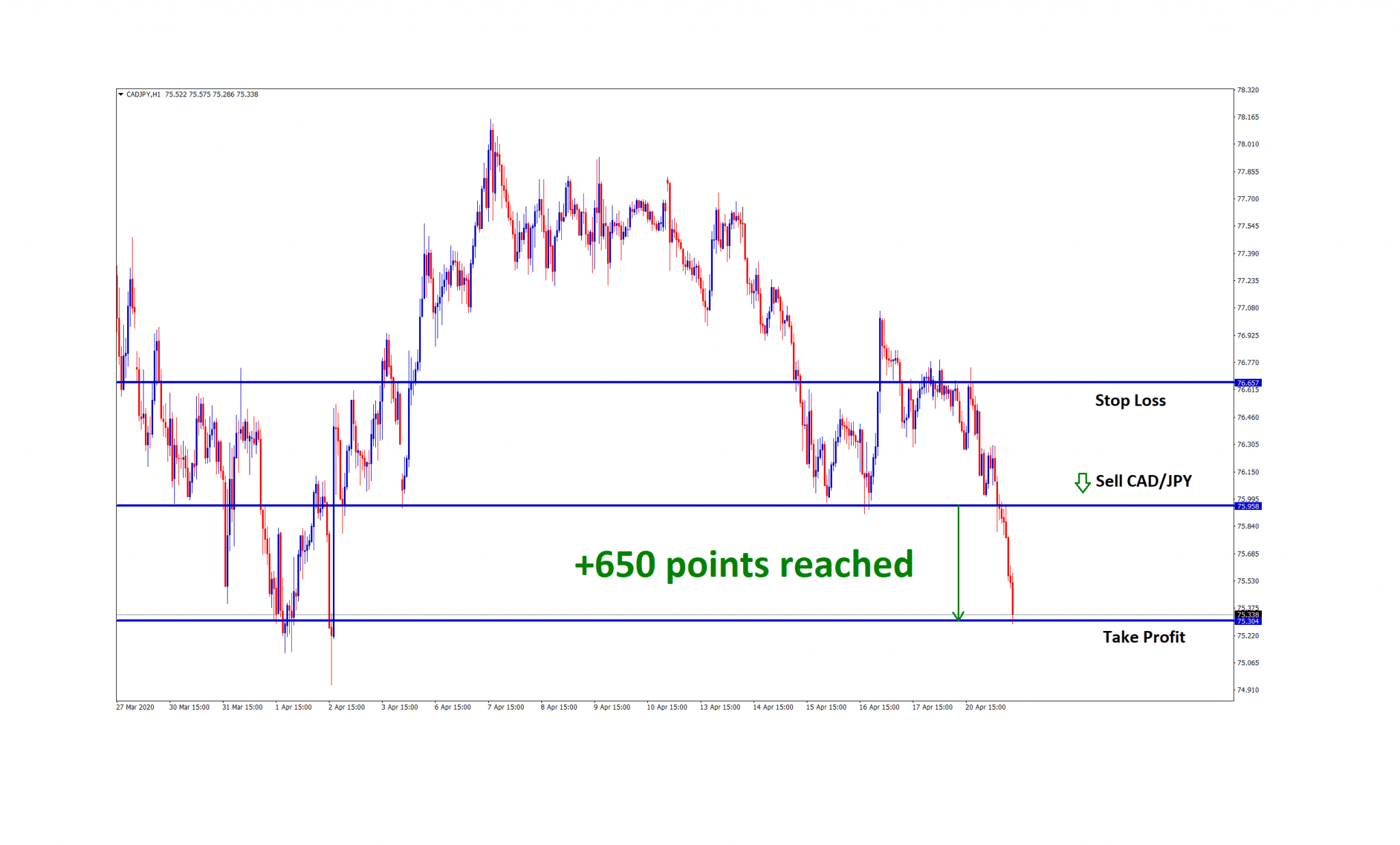 650 pips tp in cadjpy trade