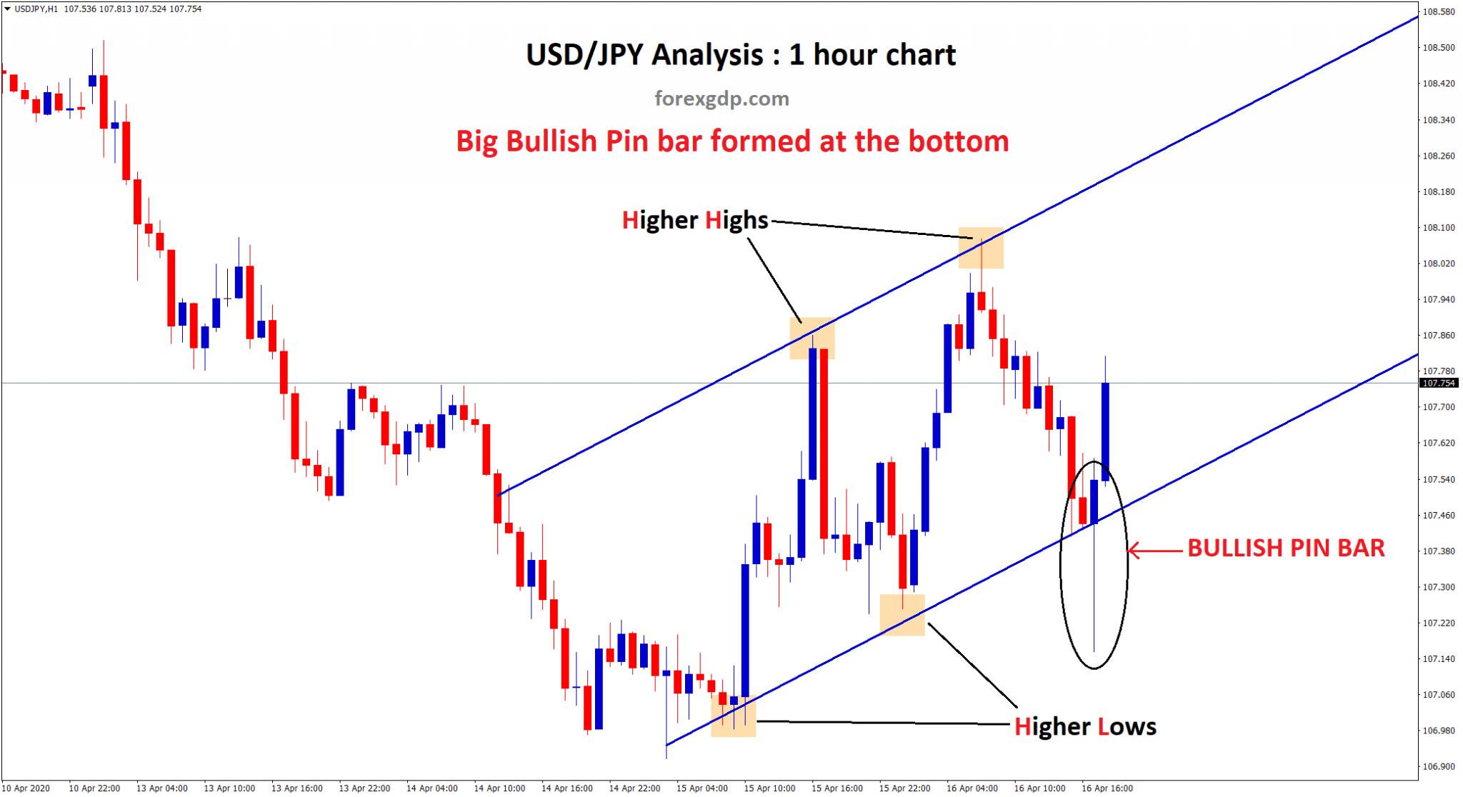 Bullish Pin Bar shows reversal in forex usdjpy 1 hour chart