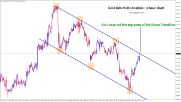 XAUUSD signal hits the top zone of down trendline