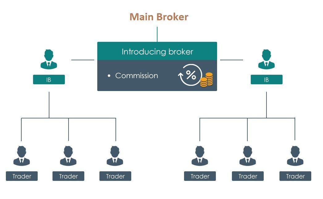 how forex introducing brokers work
