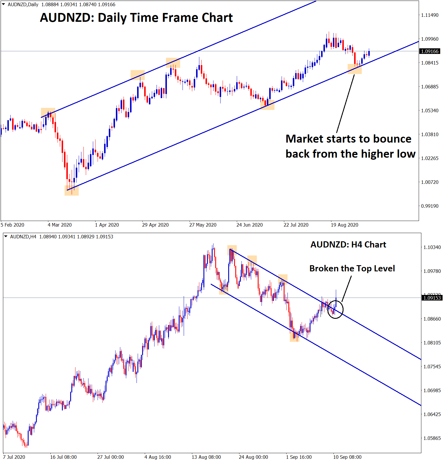 AUDNZD reversal from the higher low