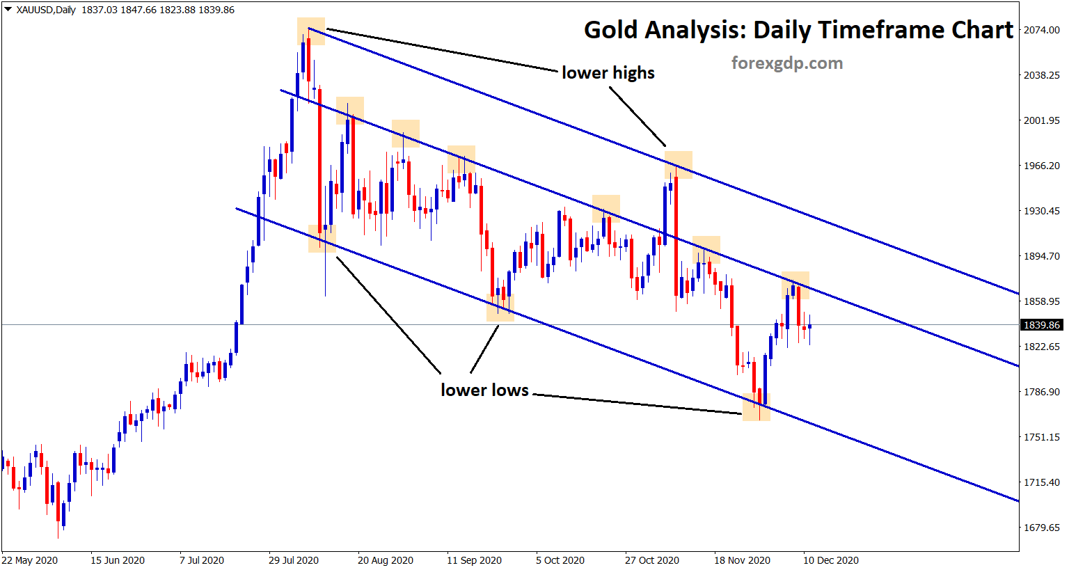 xauusd signal on gold down trend analysis