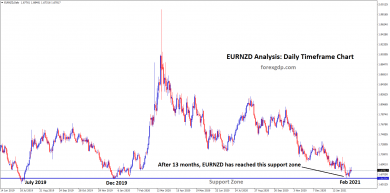 eurnzd reached the support zone after 13 months