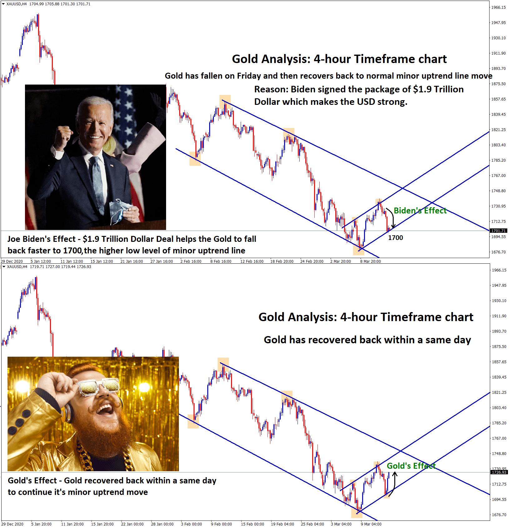 Gold Vs Bidens effect