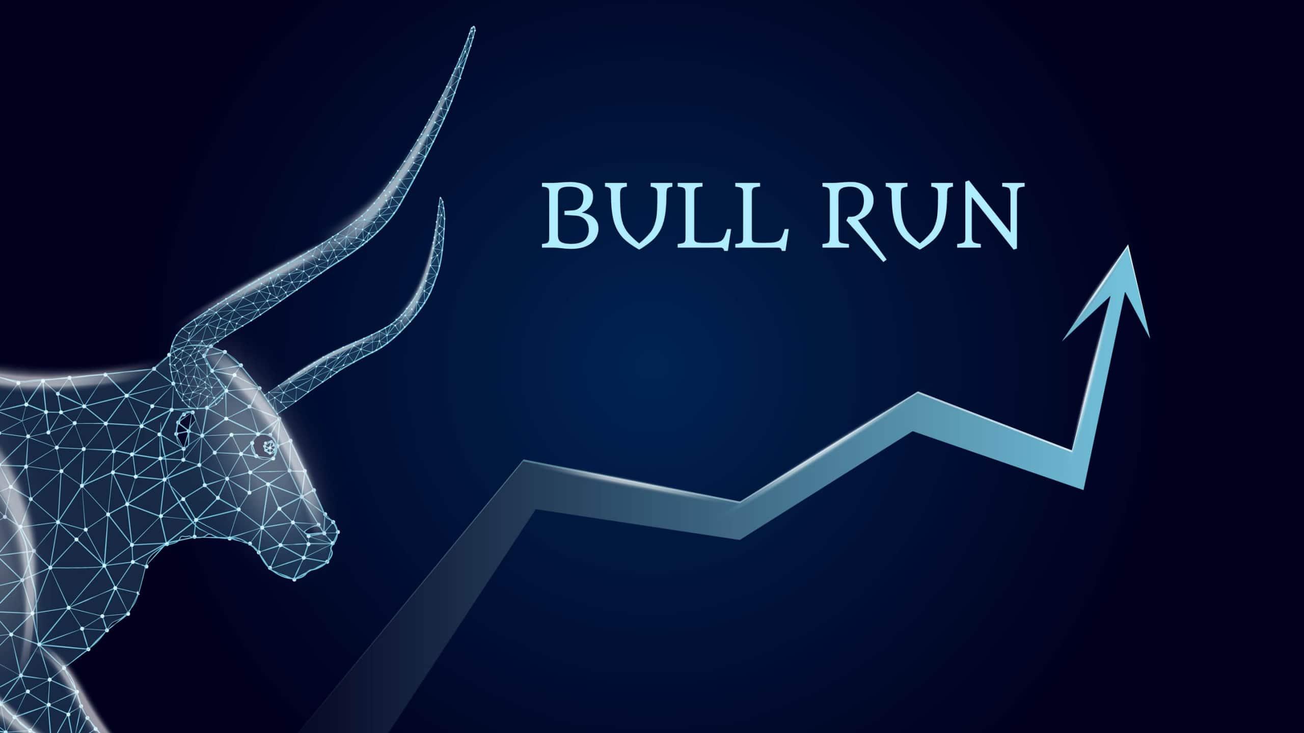 A big bull market run