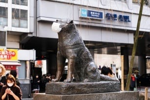 Japan covid 19 situation Tokyo lockdown