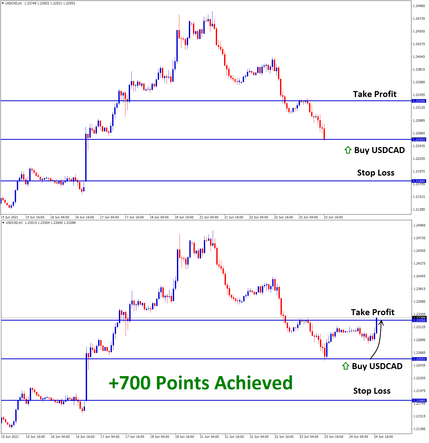 700 Points achieved in USDCAD Signal
