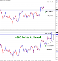 800 points achieved in USDCAD Buy signal after double bottom pattern