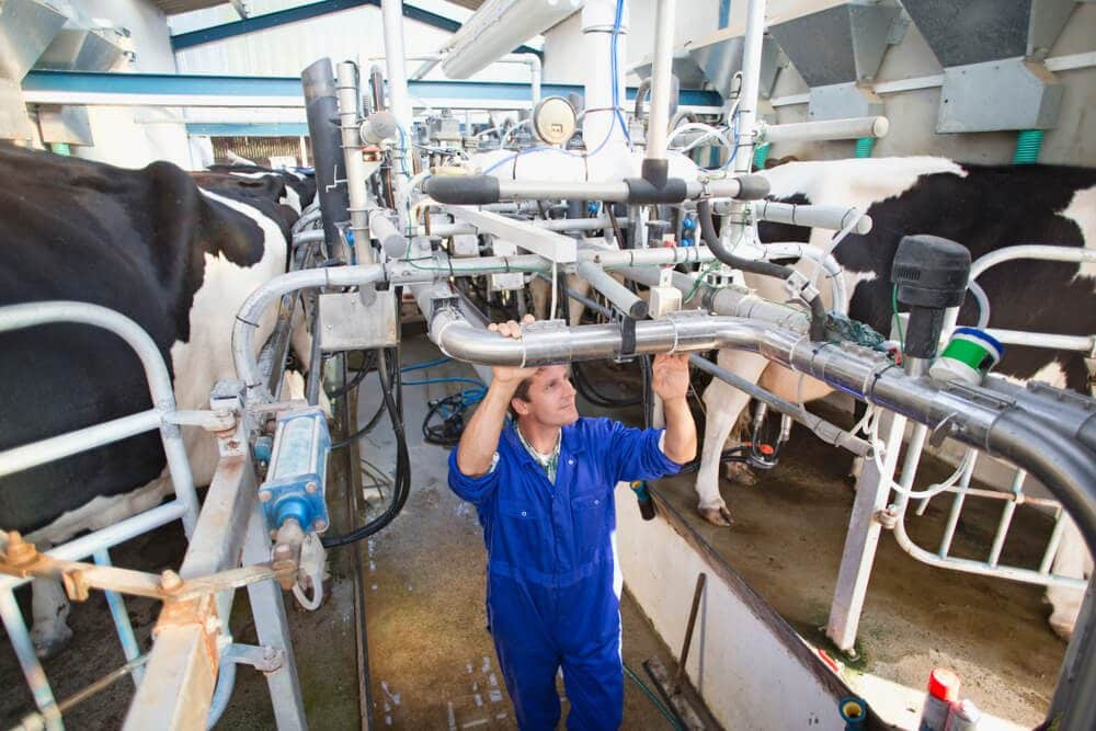 Rising milk prices failed to support New Zealand Dairy revenues